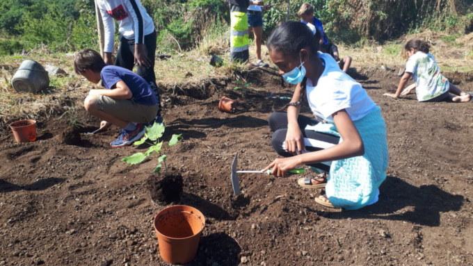 Plantation de l'école Marcel-LAURET